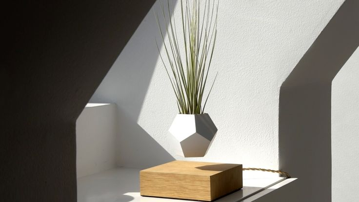 LYFE is a zero-gravity growing system allowing you to cultivate your favorite plants in mid-air.