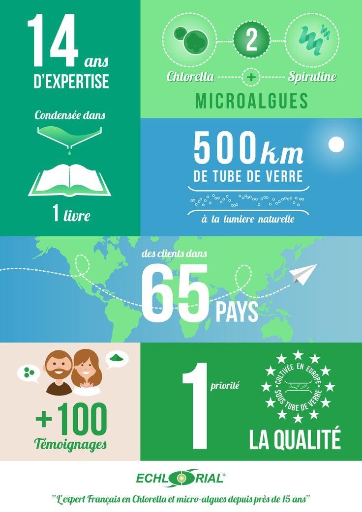 Infographie Chlorella Spiruline Echlorial