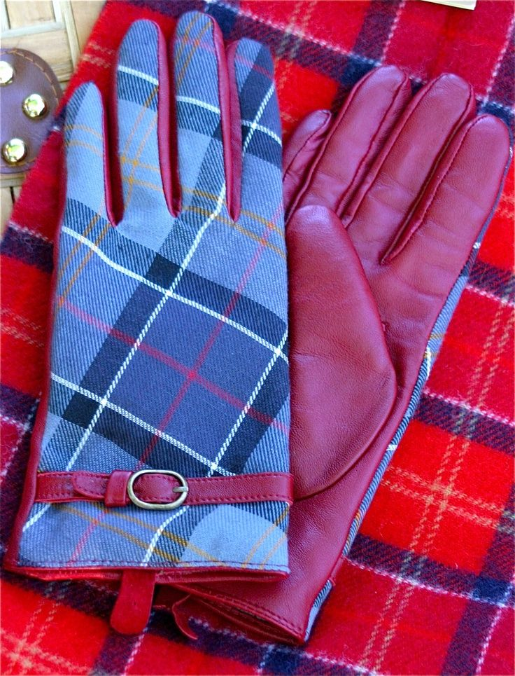 Barbour Scarf and Ladies Gloves