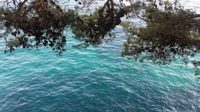 """Sparkling Water • • • #blueinside #positano #overtheblue #costieraamalfitana #mare #costiera #costa #italia #campania #ig_campania #nofilter #sea #sealife #blue #vscocam #onda #sparkling #water #waves #boating #italy #travelblogger #Италия #意大利 #Ιταλία #θάλασσα #海 #море"" by @giuliascanu_. #pic #picture #photos #photograph #foto #pictures #fotografia #color #capture #camera #moment #pics #snapshot #사진 #nice #all_shots #写真 #composition #фото #europe #roadtrip #여행 #outdoors #ocean #world…"