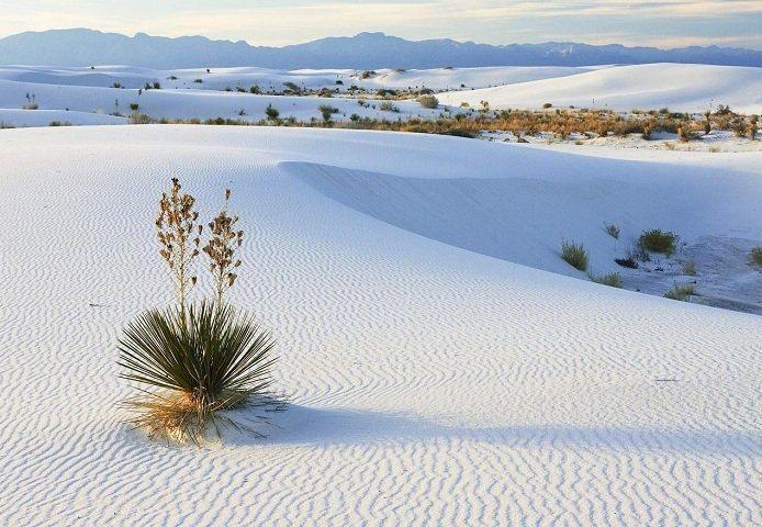 Белые пески Фарфоровой пустыни в США