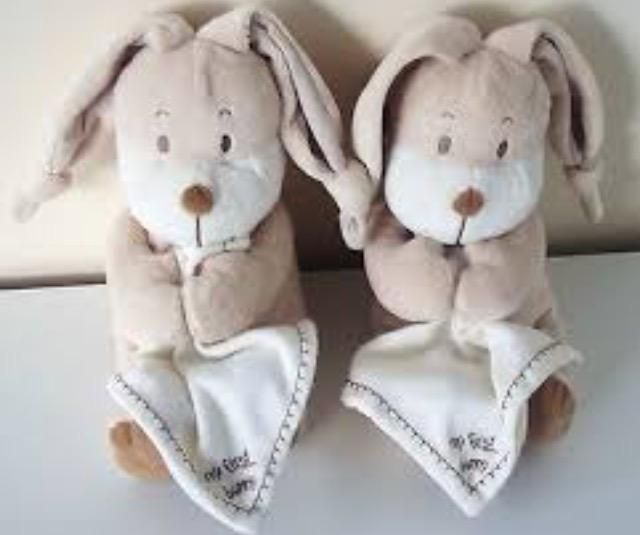 Lost on 14 Jan. 2016 @ Cambridge . 2 sainsbury My First Bunny, tied together by the ears. Well loved and had since birth. Now 6years old. We just hope we find the bunnies and bring them back home to a heartbroken little boy and mumm... Visit: https://whiteboomerang.com/lostteddy/msg/098ywf (Posted by Karena on 23 Jan. 2016)