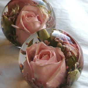 Shop - Flower Preservation Workshop