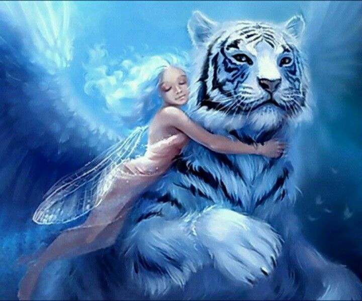 Fairy Snd White Tiger Fantasy Pinterest
