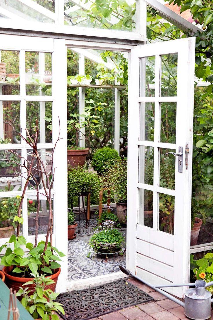 Det lilla växthuset fungerar även som lusthus. Tips! Välj uppstammade buskar, som till exempel vinbär eller krusbär. De tar mycket mindre plats än vanliga bärbuskar.