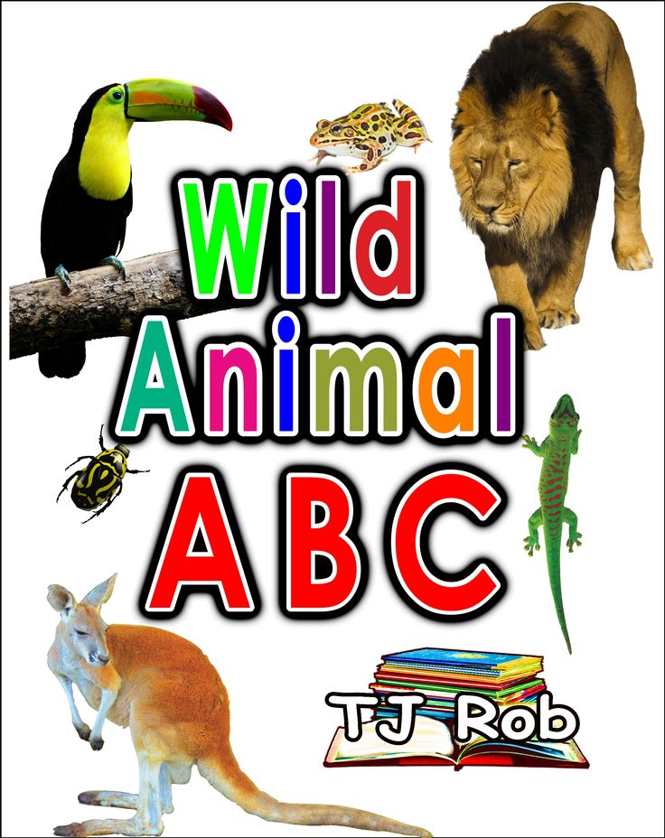 Learn your ABC. Match each letter of the Alphabet with 1 or more Wild Animal pictures associated with that letter. Learn to read. Great for 3 to 5 year olds. #alphabet #read #preschool #wildanimals #ABC