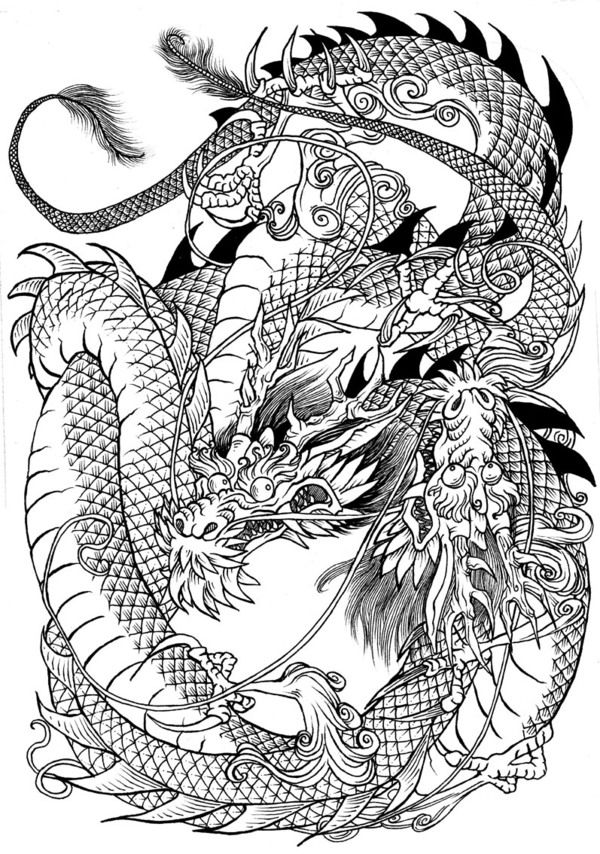 Dragons last illustrations for the jade regent series by for Adult coloring pages dragons