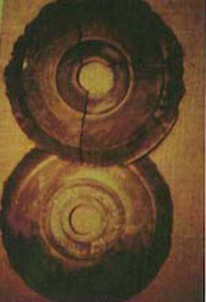 """ドロパ族の謎の石円盤(Dropa Stone)  ドロパ族は中国とチベットの境界に住む、未だ謎の多い民族。バインハル山脈の洞窟から、1938年に由来の判らない謎のディスク(石円盤)が発見された。その数、716枚。ディスクは花崗岩で造られた物だが電気を帯びていて、内部に電気回路が蓄積されている。製作された年代は約1万2千~2万年前。    ディスクの横からは謎の遺骨も何体か発見されていて、遺骨の特徴は""""身長が低く頭が異常に大きい""""というもの。学者による調査の結果『適切な変換機があれば、ディスクに収められている電気信号を再生する事は可能だろう』と。再生機器の開発途中で世界大戦が勃発し、ディスクも遺骨も失われた。"""
