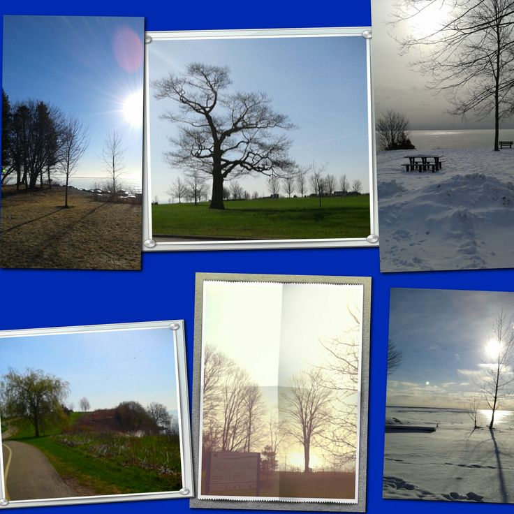 """""""Spring into Action"""" blog entry on fit2borganized.wordpress.com"""