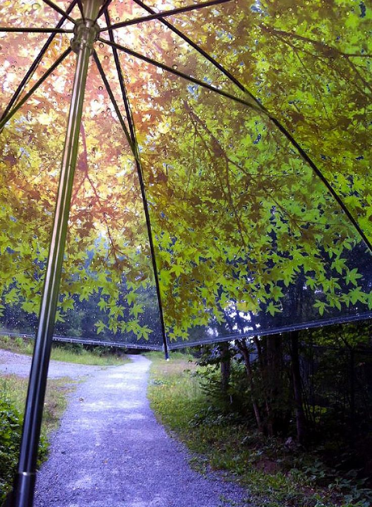 KOMOREBIAGASA TREE SHADE UMBRELLA | BY DESIGN COMPLICITY