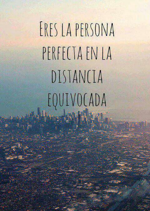 Eres la persona perfecta...