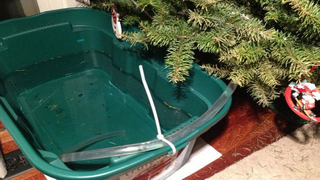 Set Up a Siphoning Water Reservoir When Leaving Your Christmas Tree for a Few Days  http://lifehacker.com/5968759/set-up-a-siphoning-water-reservoir-when-leaving-your-christmas-tree-for-a-few-days#