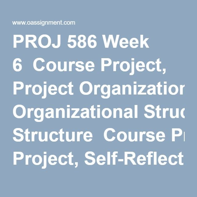enterprise project management resume