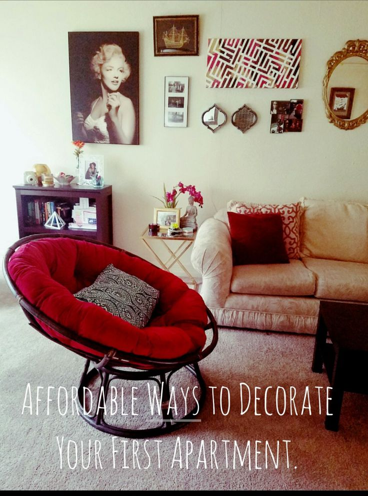 Moving into your first apartment can get very expensive, very fast. These are easy ideas to decorate your first apartment.