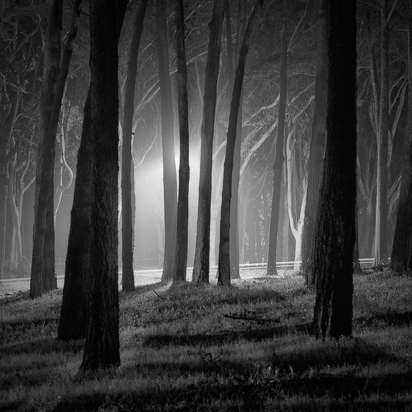 La Photographie de Nuit