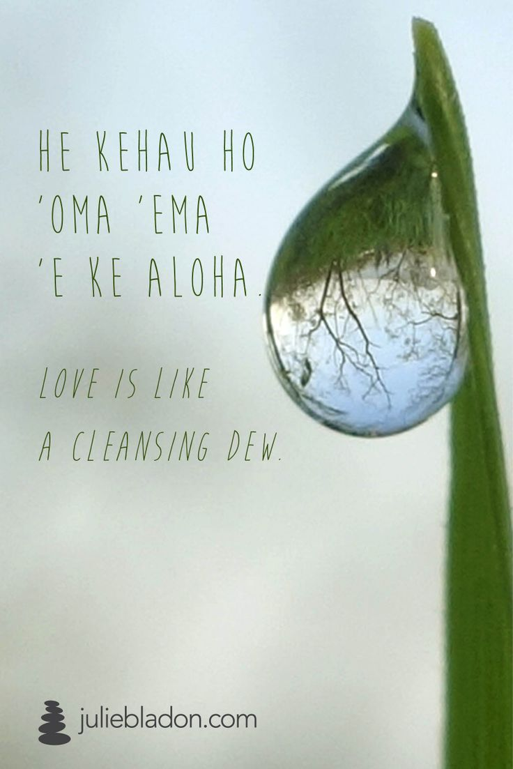 """Love is like a cleansing dew"" Lomi Lomi / Meditation / Yoga juliebladon.com"