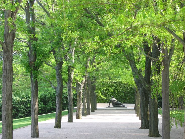 Miller Garden Honey Locust Allee To Henry Moore Sculpture Photo By Charles Birnbaum 2006 The
