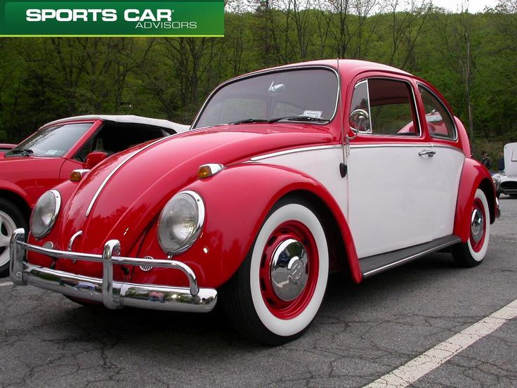 Google Image Result for http://thecommercewire.com/wp-content/uploads/2011/05/volkswagen-beetle-bug-vw-bug-bear-mountain.jpg