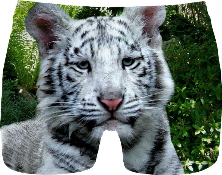 Check out my new product https://www.rageon.com/products/white-tiger-men-underwear on RageOn!