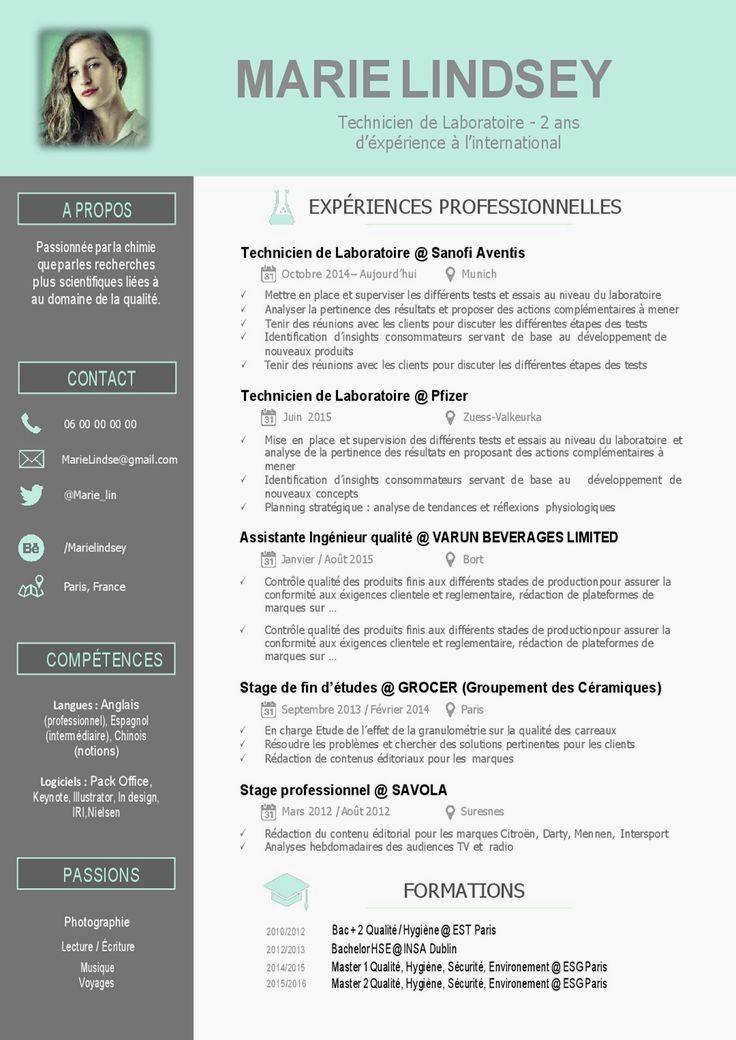 Exemple Cv Moderne 2015 Free Resume Template Word Cv Template Free Cv Words