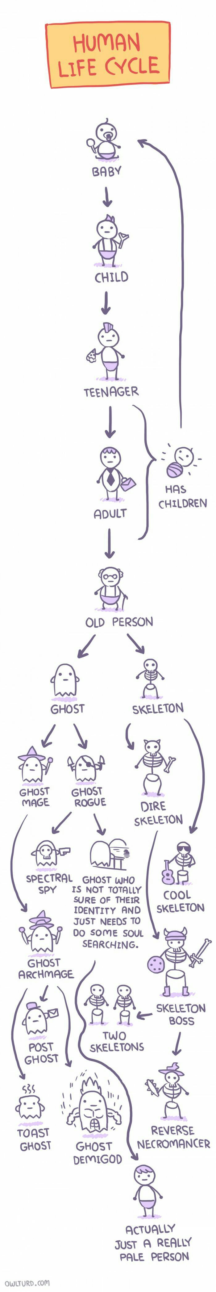 The human life cycle through gamers eyes #videogameproblems #videogames