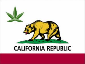 Blue Ribbon Commission on Marijuana Policy: New Report Outlines California's Options for Cannabis Legalization Policies