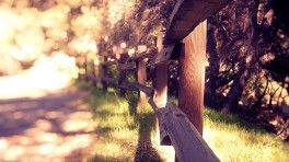 fence of wooden beams summer sunny day wide hd wallpaper