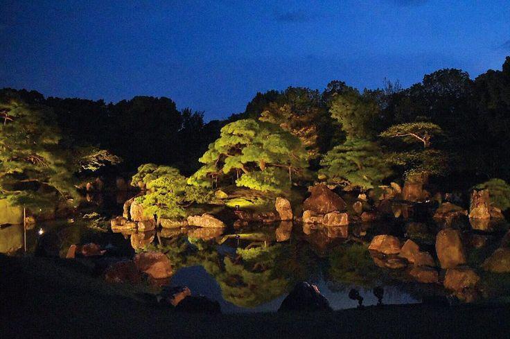 ' ' 京の七夕(二条城 二の丸庭園) ' 2016.8.3撮影 ' #kyoto #京都 #二条城 #二の丸庭園 #京の七夕 #七夕 #lightup #nightview #ライトアップ #夜景 #team_jp_ #gf_japan #igersjp #ig_japan #ig_nippon #wu_japan #loves_nippon #lovers_nippon #japanfocus #icu_japan #wonderful_places #ptk_japan #japan_night_view ' #team京都 #team_jp_西 京都 #ぶらり京都撮影部 ' #k_京の七夕2016