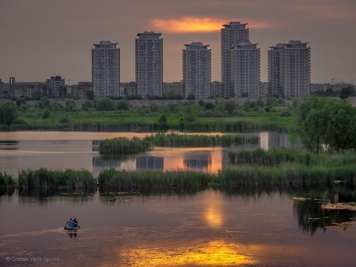 Wild Bucharest (by Cristian Vasile)