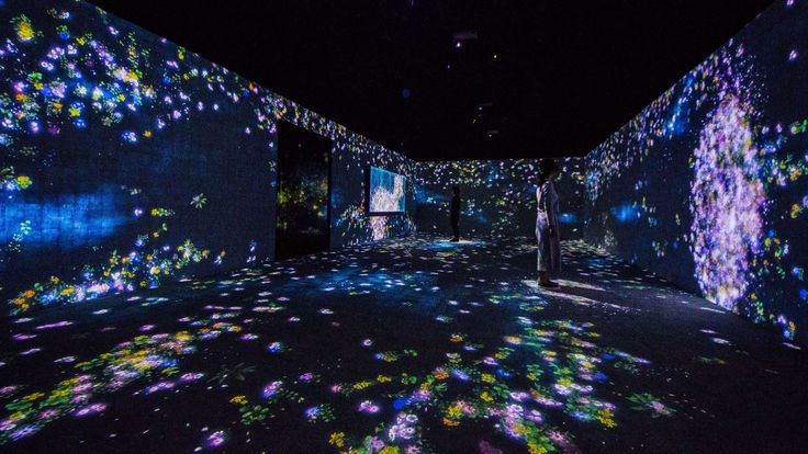 Flowers and People, Cannot be Controlled but Live Together – A Whole Year per Hour | teamLab / チームラボ