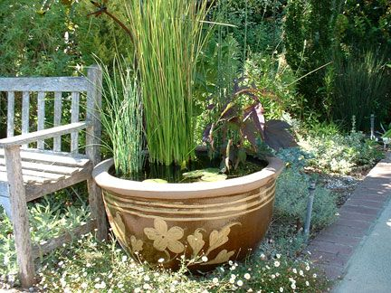 Definitely going to make a container pond this year!!  Love it!