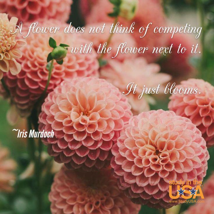 dahlia quotes