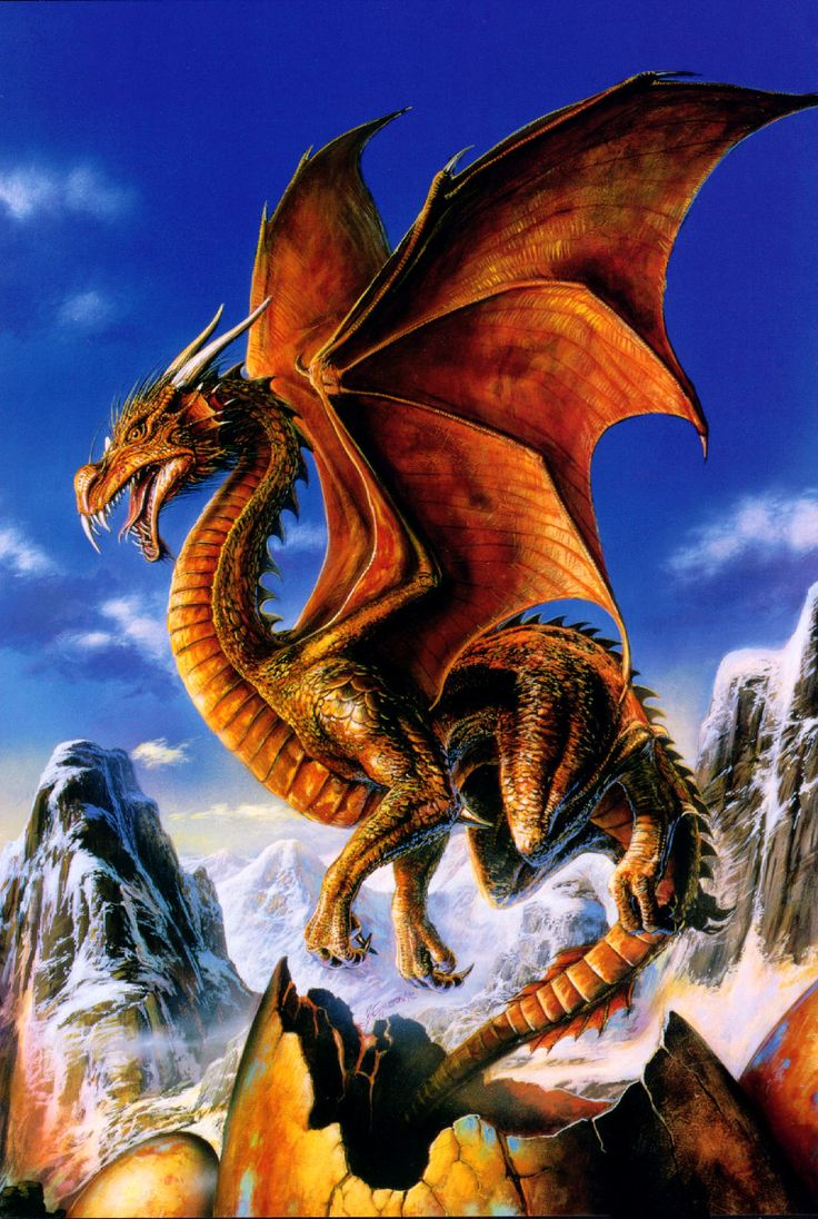 Mythological Dragons: 412 Best Dragons Images On Pinterest