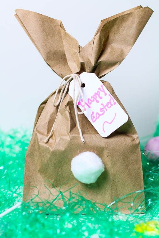 Best 25 diy easter gifts for friends ideas on pinterest diy easy diy easter bunny gift bags negle Images