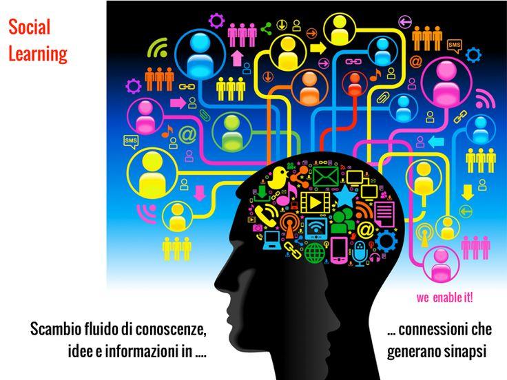 Apprendimento nella social organization