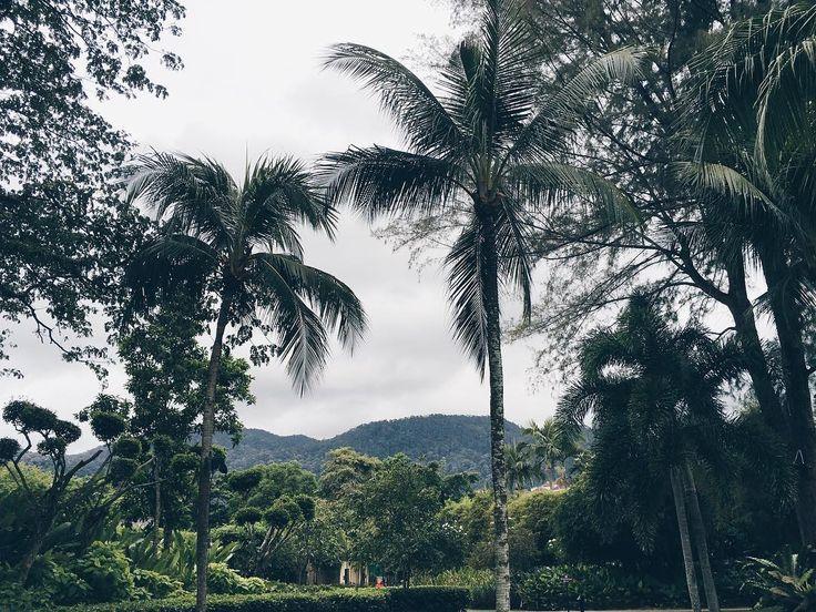 #latergram #penang #malaysia #batuferringhi #iphone #vsco #vscocam #vscogood
