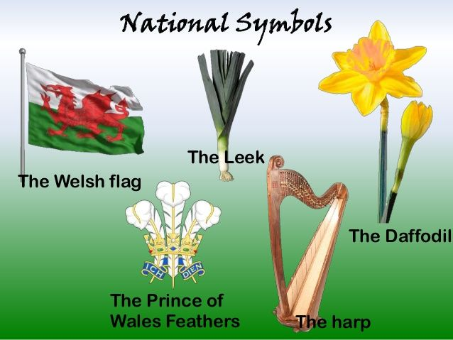 National Symbols  The Leek The Welsh flag The Daffodil  The Prince of Wales Feathers  The harp