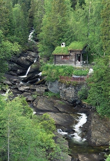 a cabin in the woods.along a waterfall..so much like Franklin NC + Highland NC...you can't see me
