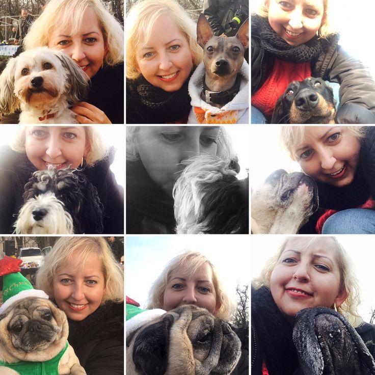 #ebugatta #kutya #dog #dogs_of_instagram #instagramdogs #dogstagram #dogoftheday #lovedogs #hound #doglover #instadog #dogface #dogsofinstagram #szelfi