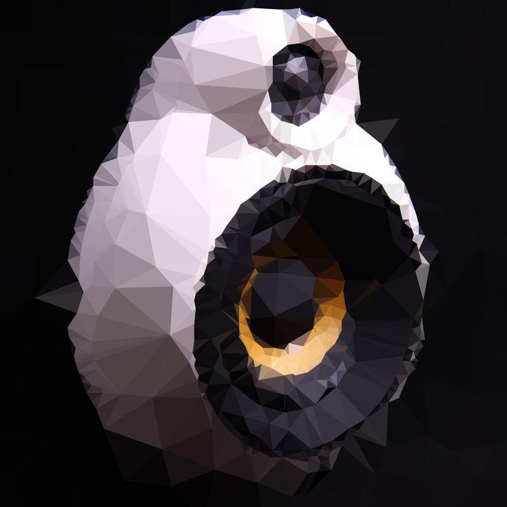 Polygon Pod | MicroPod