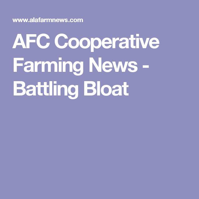 AFC Cooperative Farming News - Battling Bloat