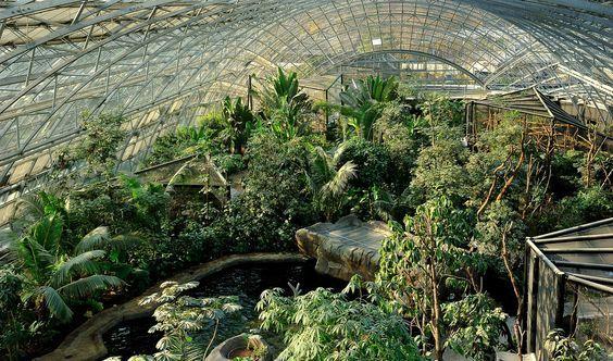 """Dans le cadre du cycle de conférence """"Le Parc Zoologique de Paris"""", le Muséum national d'Histoire naturelle présente une conférence sur la Grande Serre du Parc Zoologique de Paris, à l'Auditorium de la Grande Galerie de l'Evolution du Jardin des Plantes."""