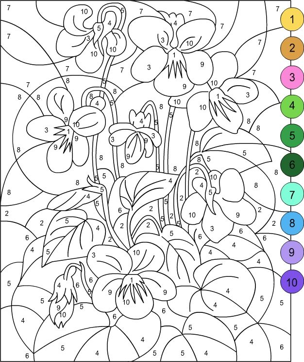 Free Printable Coloring Pages For Adults Color By Number 1