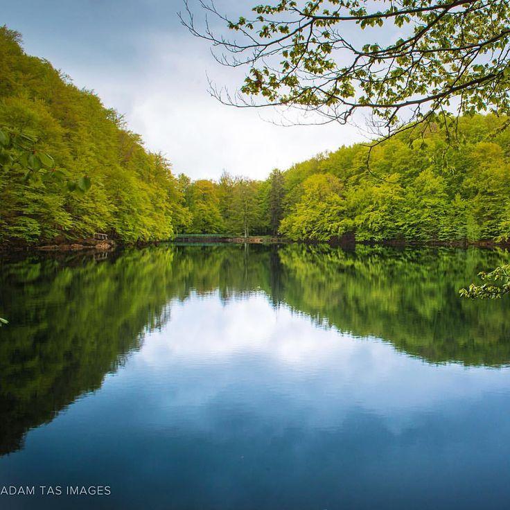 Morské Oko Lake, Slovakia. Formerly called Veľké Vihorlatské Jazero, Morske Oko is in the heart of Vihorlat Mountains in Eastern Slovakia. Together with Vihorlat Medieval Forest it's been agreed by UNESCO as Protected Landscape Area. More at https://flickr.com/photos/adamtasimages/ Or: https://facebook.com/AdamTasImages/ #slovakia #morskeoko #adamtas #photographer #adamtasimages #slovensko #springbreak #vihorlat #dnescestujem #nikon #unesco