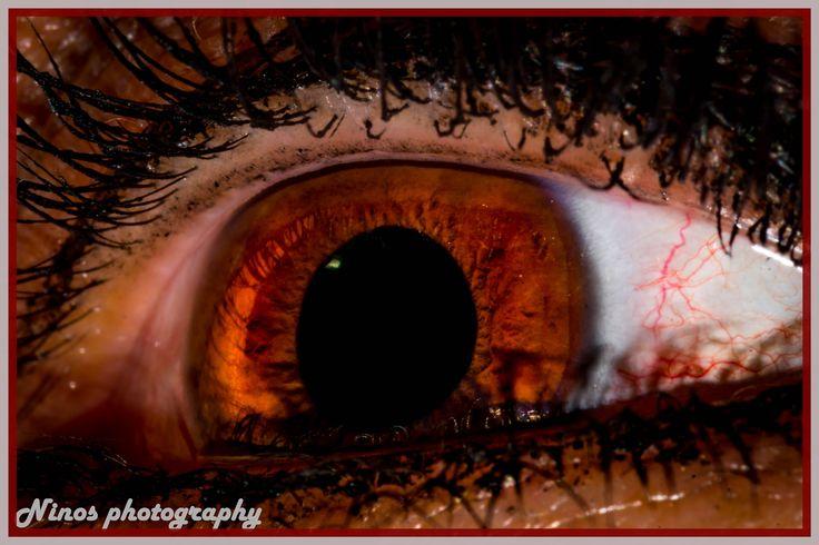 the eye !!! 2016