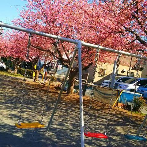 【chucky826】さんのInstagramをピンしています。 《さくら🌸 と ぶらんこ💚💛❤💙 - いつもの公園がピンク色☁🌸 - ブランコに乗って桜に届くか届かないか もどかしい気持ち。届きそうで届かない。 あと少し。落ちないように気をつけながら。 一生懸命漕げば漕いだ分だけ近づける。 頑張れば頑張った分だけ夢に近づける。 - 好きな人とブランコに乗りながら 私のほうが高い~!とかってやりたいな。 のんびりブランコに座ってお話したい。 ちょっと漕いだりしながら将来の夢とか。 ゆらゆら。公園デートしてみたい⛲👫 - #春 #spring #桜 #cherryblossom #sakura #ピンク #pink #公園 #park #ブランコ  #swing #デート #date #夢 #dream》