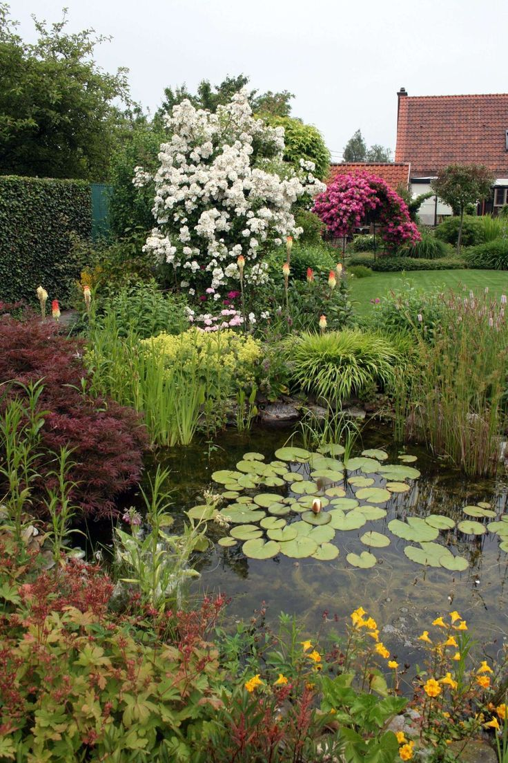 17 Www Mein Schoner Garten De Gestaltung Mit Bildern Garten Schoner Garten Bilder Wasser Im Garten