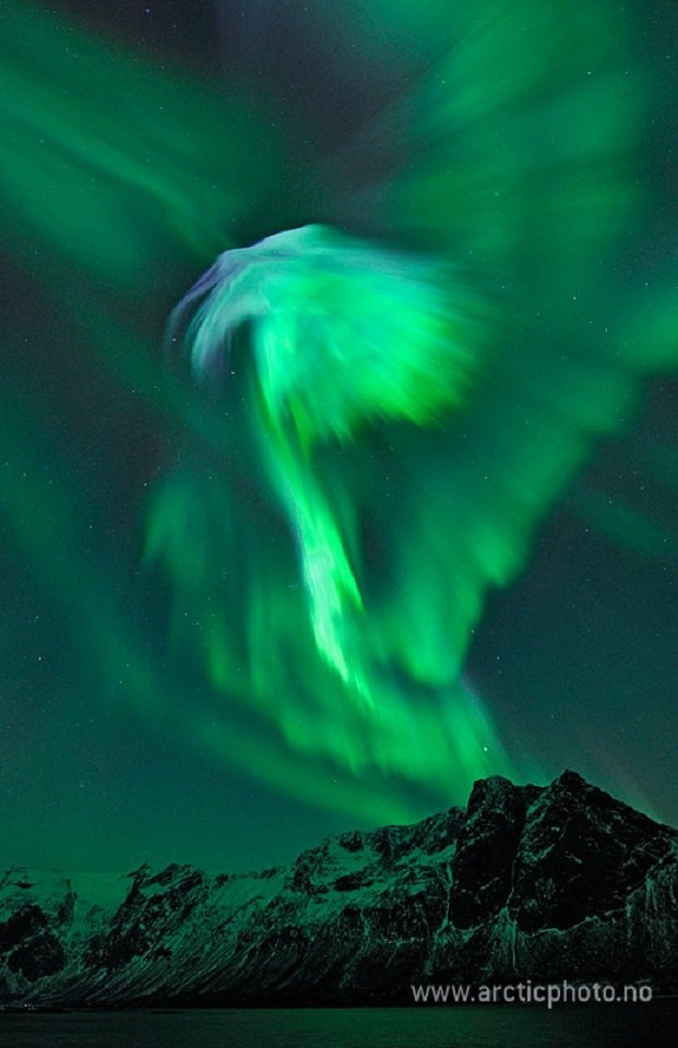 Auroras.  Bjorn Jorgensen's view of the aurora was captured on Sunday at Grotfjord, close to Tromso in north Norway.~how lovely is it that i'd get to one day see this beautiful sight of aurora boralis like this and capture it in a beautiful moment of magic in the sky :)