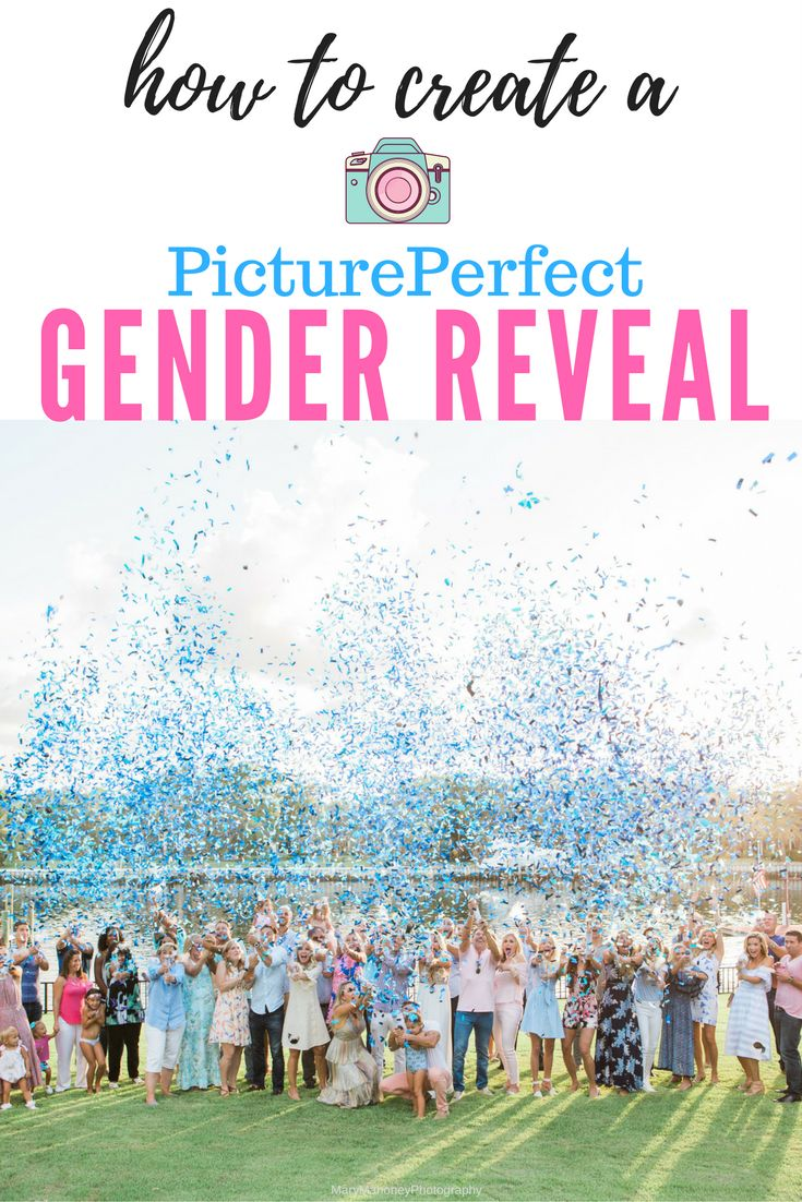 Create your perfect Gender Reveal! Your custom gender reveal confetti cannon for the PicturePerfectReveal!  Gender Reveal, Gender Reveal Ideas, Gender Reveal Party, Gender Reveal Confetti Balloon, Gender Reveal Cannon, Gender Reveal DIY, Maternity Photo Ideas, Maternity Photography, Maternity Photo Shoot, Confetti Photography