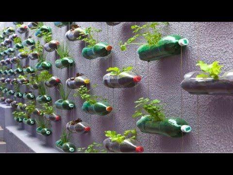 Urban Green Survival Bottle Garden